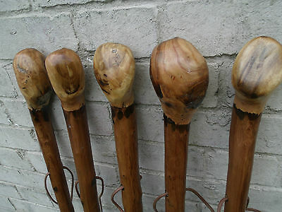 """Chestnut Wood Walking Stick Cane Root Ball Knob Rustic Thick Walking Cane 46"""" 3"""