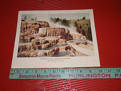 C4804 Mammoth Hot Springs Terraces Yellowstone Nat/'l Park WY 1935 Teich Linen PC