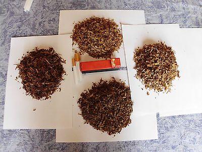 7x1000 Tabaksamen 7 Sorten  Virginia Burley Orient  Tabakpflanzen Tobacco Seeds