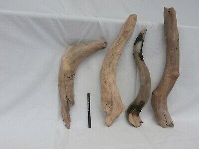 legni di mare lungo largo grosso storti(2160) scultura bricolage shabby deco DIY 2