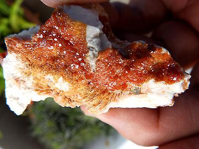 """Minerales"""" Fantasticos Cristales Biterminados De Vanadinita Marruecos- 10A15 """" 3"""