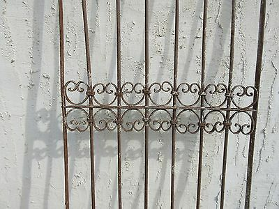 Antique Victorian Iron Gate Window Garden Fence Architectural Salvage Door #343 3