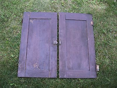 """Antique Vintage Pair Cabinet Doors from Old School Chemistry Lab 30"""" Tall 10"""