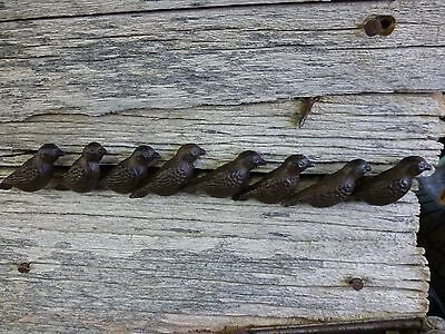 GROUP 8 CAST IRON RESTING BIRD CABINET PULLS DOOR DRAWER DRESSER KNOBS rustic 3