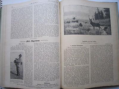 """""""Wild und Hund""""  25. Jahrgang Januar - Dezember 1919, Hege,Pirsch 9"""