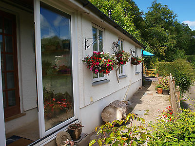 OCTOBER 2019 HOLIDAY Cottage West Wales Walking Beach £280wk Dog Friendly 4