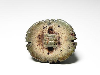 Zurqieh -  Ancient Egypt - Large Faience Button Scarab , 1070 - 600 B.c 4