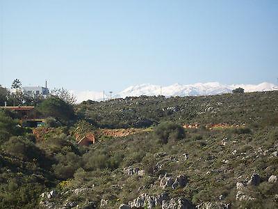 Ferienhaus, mit zwei Wohnungen, für Eigennutzung u. Rendite, nahe Chania / Kreta 8