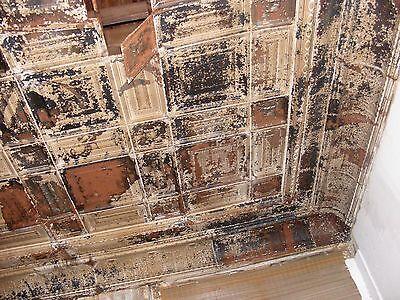 "2 each Reclaimed 12x12"" Antique 1880's Ceiling Tins / Tiles 4"