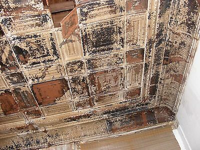 "2 each Reclaimed 48"" x 6.5"" Antique 1880s Tins / Ceiling Tile-Cornice/Half Round 9"