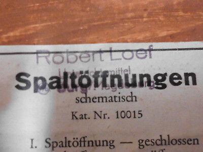 Spaltöffnungen / Gipsrelief / Gipsdarstellung in Holzrahmen gefasst, Robert Loef