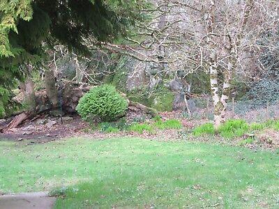 OFFER 2019: Holiday Cottage, Harlech, Snowdonia (Sleep 10) - WINTER WEEKEND 11