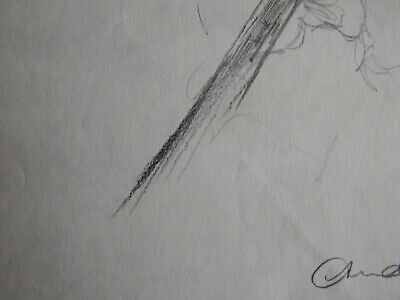 Original Pencil realist expressive line flower drawing of a single iris on paper 9