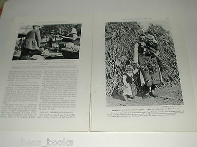 1929 magazine articles x2 on the Danube and Austria, color pics, history, people 6