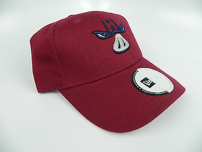 2 of 5 LEHIGH VALLEY IRON PIGS NEW ERA MiLB VINTAGE MINOR LEAGUES CAP HAT  NEW! RARE 6b8ca458146