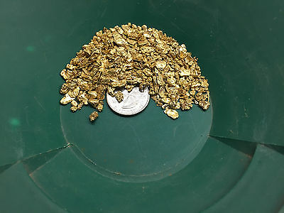 2 POUNDS Gold Paydirt 100% Unsearched PLUS Guaranteed Added Gold 4