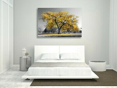 Large Tree Yellow Leaves Black White Canvas Wall Art Picture Print 30mm Deep 4