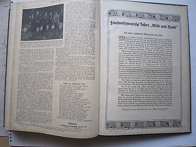 """""""Wild und Hund""""  25. Jahrgang Januar - Dezember 1919, Hege,Pirsch 8"""