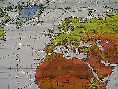 Schulwandkarte schöne alte Weltkarte Klimakarte Climate 248x154cm vintage ~1960 2