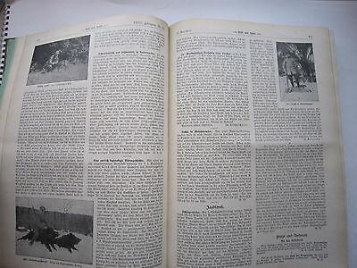 """""""Wild und Hund""""  23. Jahrgang Januar - Dezember 1917, Hege,Pirsch 5"""