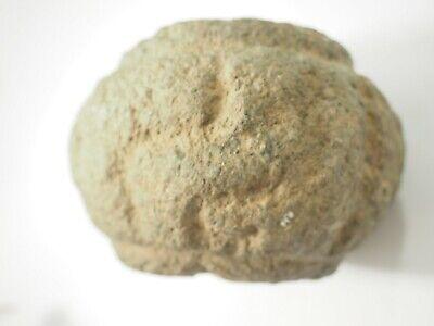 Pre-Columbian Chavin Stone Mace Head Peru 1500-400BC SAA-3 7