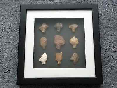 Paleolithic Arrowheads in 3D Picture Frame, Authentic Artifacts 70,000BC (O008) 3