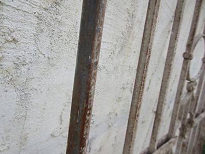 Antique Victorian Iron Gate Window Garden Fence Architectural Salvage #869 6