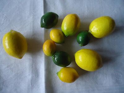 10 dekorative Zitrusfrüchte aus Pappmachée in unterschiedl. Größen TOP-Zustand 2