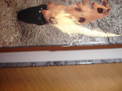 STEIFF Sortiment 1892-1943 Sortiment Artikel Produktpalette Raritäten Buch Book
