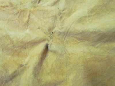 "Beautiful Native American Home Tanned Buckskin Deer Hide Soft 49"" In By 30"" In"
