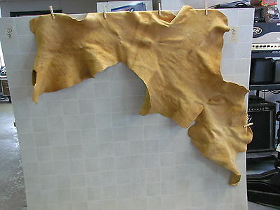 "Native American Light Color Home Tanned Hide 49"" By 48"" Irregular Shaped"