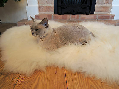 Soft 100% Genuine Natural Sheepskin Rug - Pet Bed - Dog - Cat - Silky Warm Wool 5