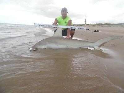 24//0 Circle Hook Shark Fishing Bite Leader 5ft Stinger Stinger Series