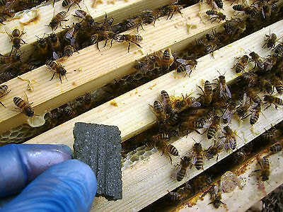 Apilife Var - Varroa Treatment - Select Quantity 4