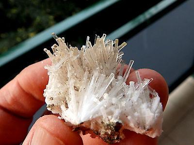 """Minerales """" Excepcional Mineral De Yeso Hialino Arboreo Del Sahara  -   9D15 """" 3"""