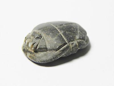 Zurqieh - Af42- Ancient Egypt. Diorite Button Scarab. 600 - 300 B.c 2