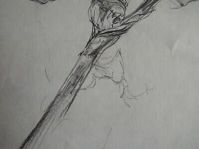 Original Pencil realist expressive line flower drawing of a single iris on paper 10