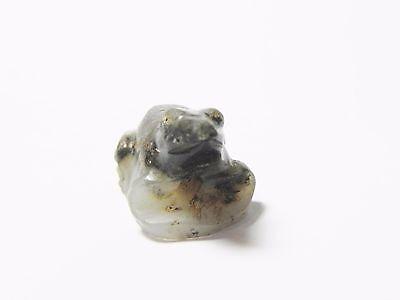 Zurqieh -Q240- Ancient Egypt , New Kingdom Agate Frog Amulet. 1400 B.c 5