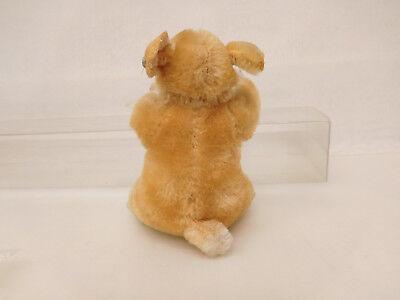 MES-52286Älterer Steiff Hamster H:ca.9cm mit Holzwollstopfung mit Knopf, 6