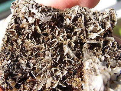 """Minerales """" Bonitos Cristales Lenticulares De Barita Mina Beltraneja -  7A14 """" 2"""