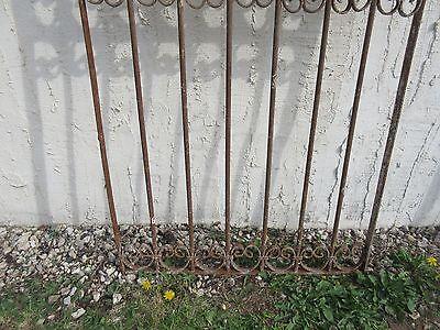 Antique Victorian Iron Gate Window Garden Fence Architectural Salvage Door #343 4