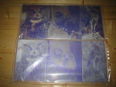 Metall Druckplatten 4, Farbig Vögel Größe  ca. 35 x 16,3 2