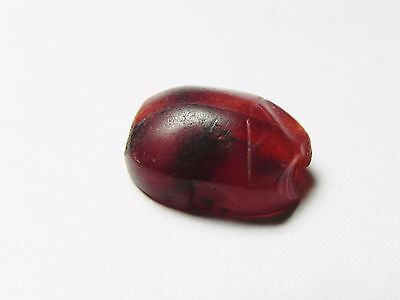 Zurqieh -Cy53- Ancient Egypt , Beautiful Carnelian Scarab. New Kingdom .1400 B.c 4