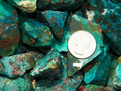 1000 Carat Lots of  Chrysocolla & Turquoise Rough - Plus a FREE Faceted Gemstone 6