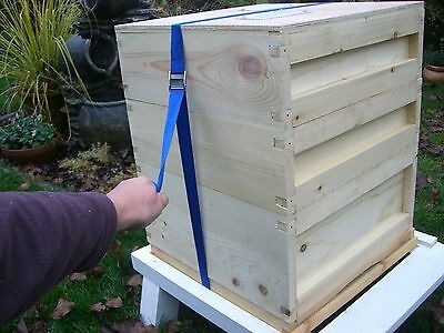 Beekeeping Economy Hive Securing Straps x 6 2