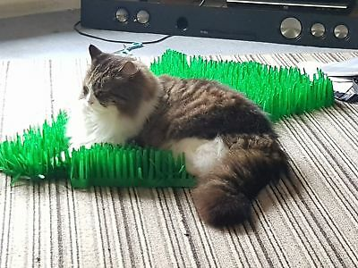 Tissue Paper Grass Mat for cat or kitten toy UK FAST DELIVERY pet toys. 8