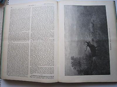 """""""Wild und Hund""""  23. Jahrgang Januar - Dezember 1917, Hege,Pirsch 9"""