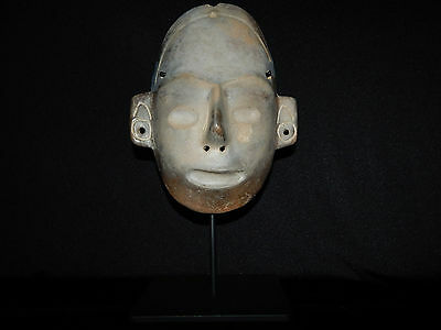 Pre-Columbian Life-Size Colima Death Mask, Shaft Tomb, Archaic, 100% Authentic 2