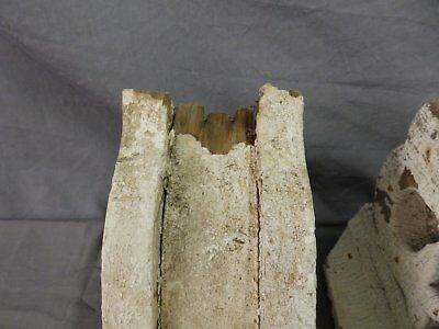 Antique Pair Corbels Wood Small Victorian Architectural Shabby Vtg Chic 513-17P 4
