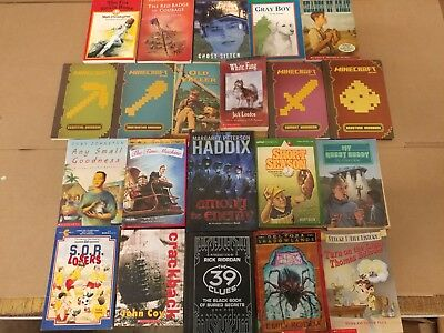 Lot of 20 Chapter Books for BOYS Youth Early Reader Young Adults Children RANDOM 2